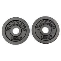 HAMMER dumbbell plates 2x 1.25 kg
